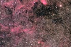 チューリップ星雲付近